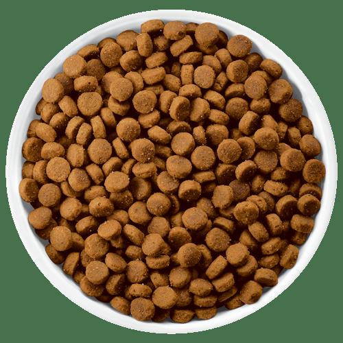 Aliments pour chiens